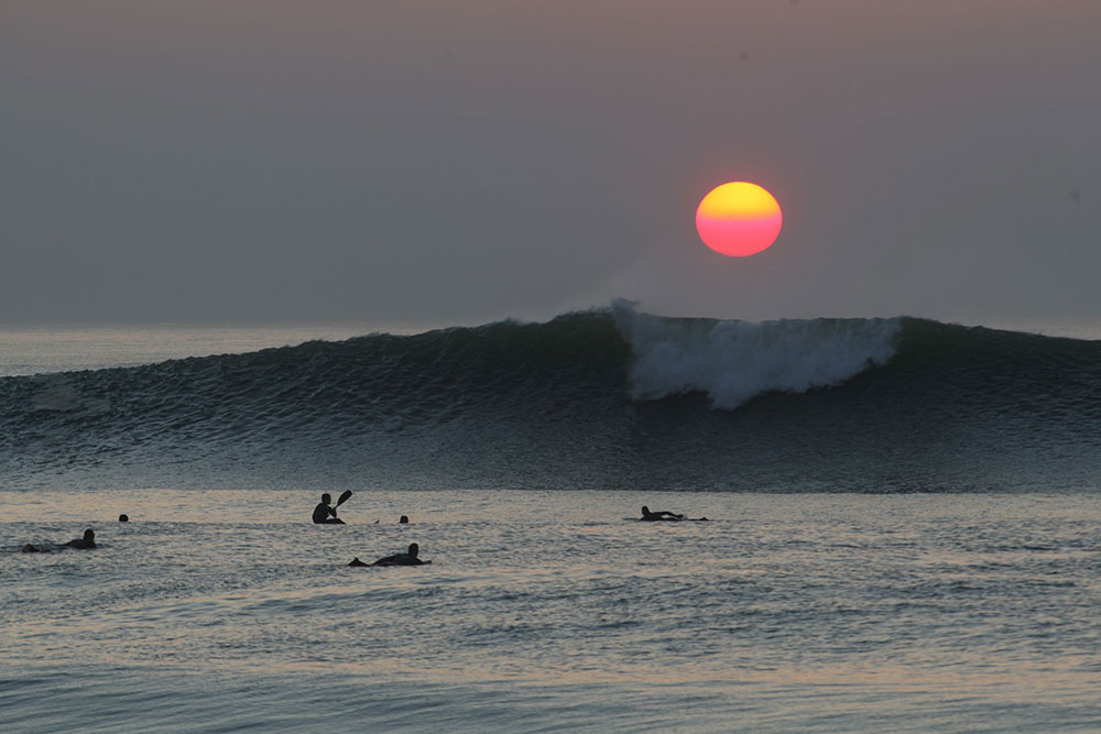 Surfers-in-the-water