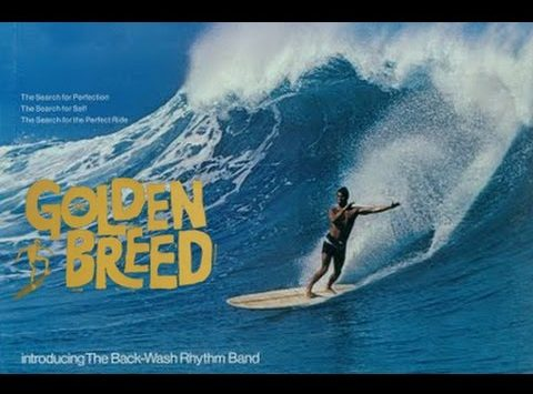 The Golden Breed Surf