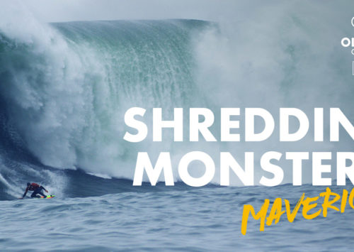 PEDRO TEMBOURY, DIRECTOR DE SHREDDING MONSTERS: MAVERICKS