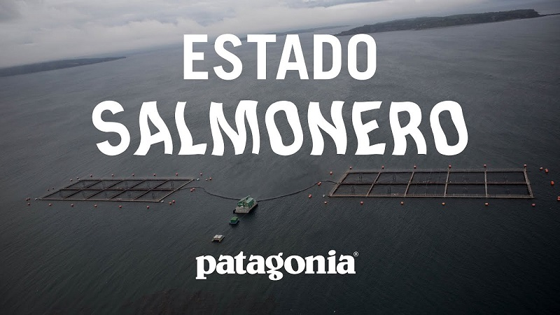"""ESTADO SALMONERO"", EL DOCUMENTAL"