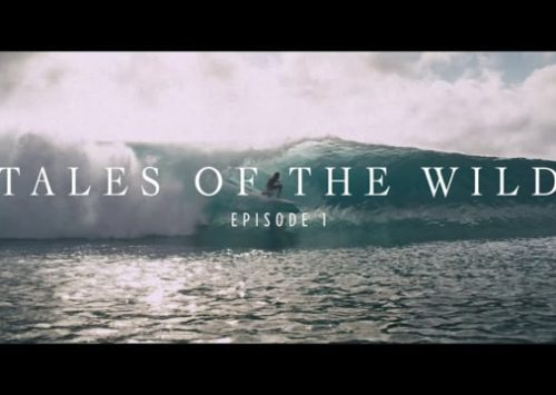 «TALES OF THE WILD» SERIE